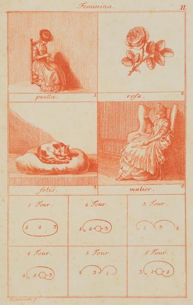 Illustration lateinischer Genera und Grammatik
