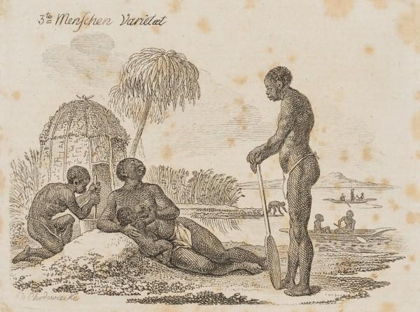 """Die Aethiopische """"Menschen-Varietät"""""""