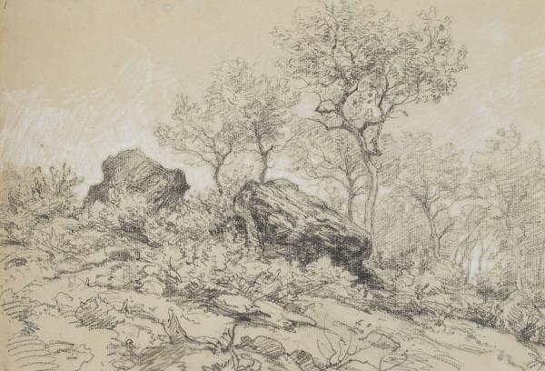 Felslandschaft mit Bäumen im Taunus