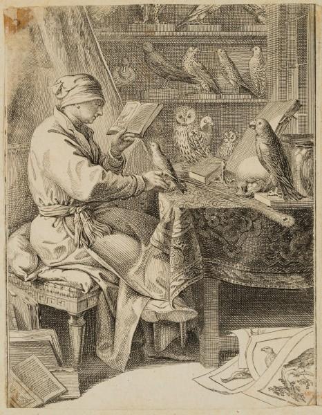 Der Vogelkundler