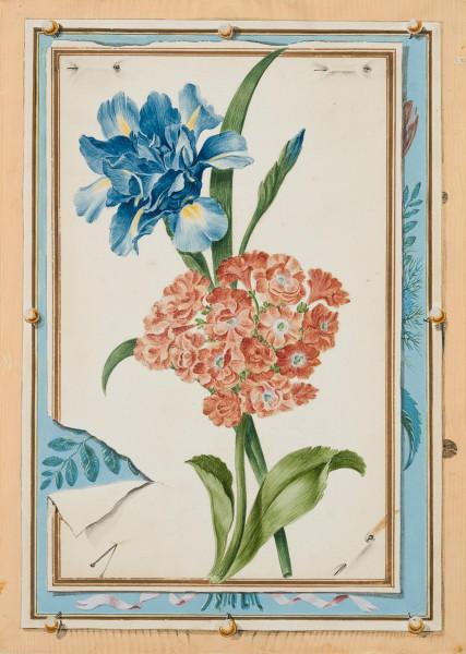 Quodlibet mit Blumenaquarell mit gefüllter Schwertlile und Primel