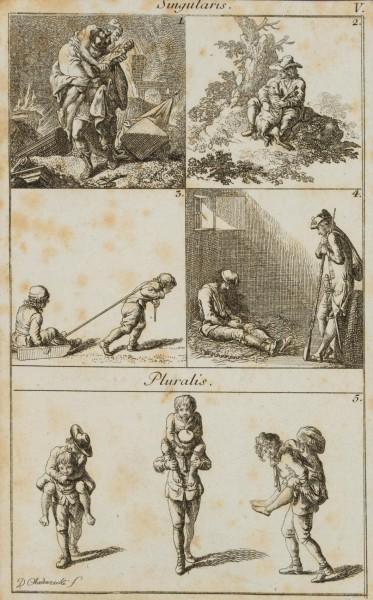 Illustration lateinischer Numera und Grammatik
